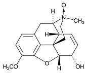 Instructor Calcitonin