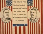 1895 election