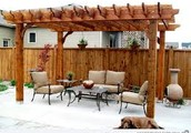 Growing Ideas For The Pergola