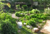 Quick Solutions In permaculture design training - Insights