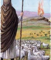 משה רועה צאן רואה את השנא הבוער