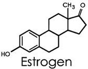 Role of Estrogen