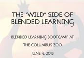 """Wild"" Side of Blended Learning Bootcamp"