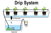3 Different Types of Hydroponic Systems