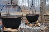 Learn how maple syrup is made!