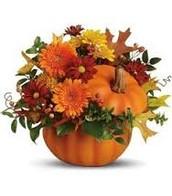 Pumpkin Arrangement with Chrysanthemums