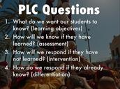 PLC Focus Questions