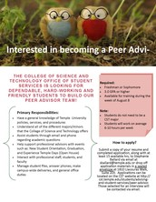 CST Peer Advisors wanted