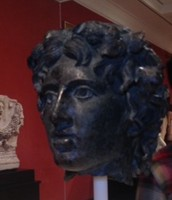 Head of Young Bacchus