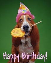 Happy Birthday to You, Happy Birthday to You.......
