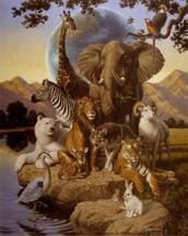 التنوع البيولوجي