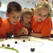 Snail Race Captivates Students
