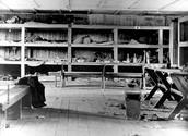 Bunk beds in Buchenwald.