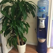 SPOTLIGHT: Water Cooler