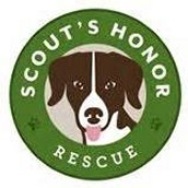Scout's Honor Rescue