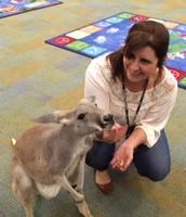 Mrs. Wright with Jaxx the kangaroo from Creature Teacher