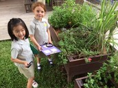 G1AMo: We looked at different habitats around the school!