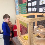 Chick Open House