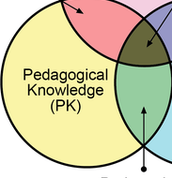 Pedagogical Knowledge