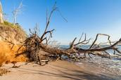 Beach Erosion #2