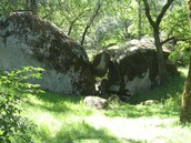 "The ""Dragon's Lair"" grotto at the OLE property"