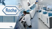 Roche, the lab where the drug was developed