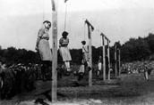Execution Camp