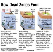 How dead zones form.