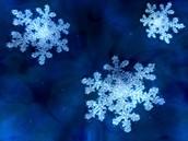 Winter Lock-In
