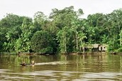 People live of of the Amazon