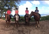 Horseback Riding in Hawaii
