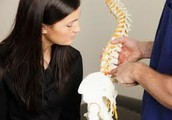 Talking about How Chiropractic Treatment Benefits Patients With Scoliosis