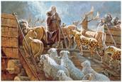 El Arca De Noeh