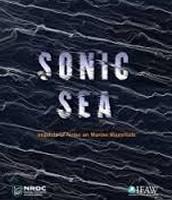 Tuesday Film: Sonic Sea
