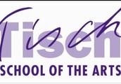 #2 Tisch School of the Arts