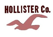 Information about Hollister