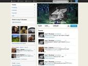 Joey Rockstar Fake Twitter