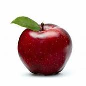 Apple-Skin