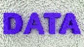 Trimester 1 Discipline Data (August 26-November 23)