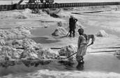 ים המלח כרייה ידנית של אשלג, 1938
