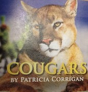 Cougars- pg. 251