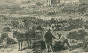 The battle Brownsville