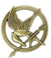 Hunger Games Event at Warren Public Library