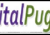 Digital Pugs