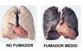 NO FUMADOR VS FUMADOR MEDIO
