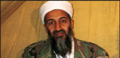 Osama's jobs were to