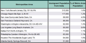 Top Metropolitan Destinations for Indian Immigrants in the United States