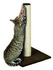 Waarom krabt een kat aan meubels?