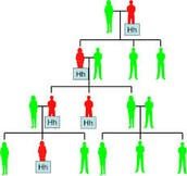 Family Tree with the gene