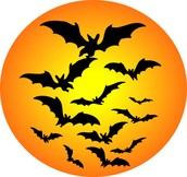 Join us for Halloween stories, crafts, delicious snacks, games, and Trick or Treating throughout the library.